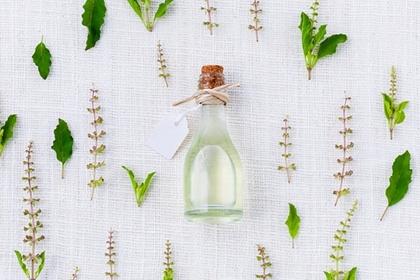 透明なボトルと草花