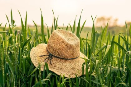 草原 麦わら帽子