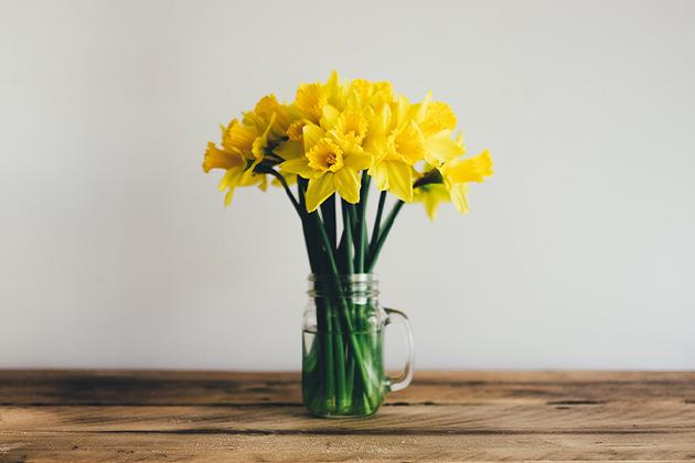 ガラスジャーに生けられた黄色い水仙